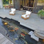 19 mẫu thiết kế hồ cá ngoài trời cực đẹp và độc