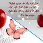 Thông điệp hay về tình yêu và cuộc sống 6