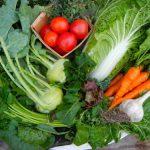 Muốn giảm cân nên ăn những thực phẩm nào?