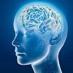 11 cách đơn giản để tăng cường trí nhớ