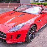 Ngắm 'siêu báo' Jaguar mui trần mạnh nhất Việt Nam