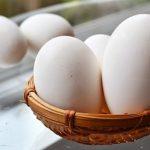 Sự thật ăn trứng ngỗng sẽ giúp con thông minh hơn?